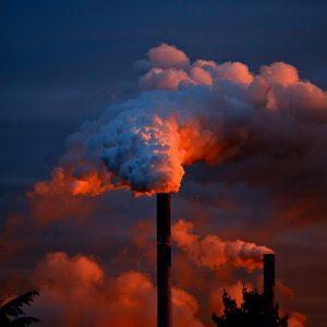«Магнит» подхватил экологическую инициативу и начал принимать пластиковую тару5